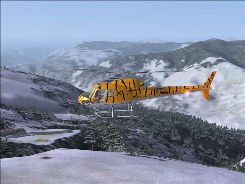[Fs9]Esquiando com tigre de bengala 018