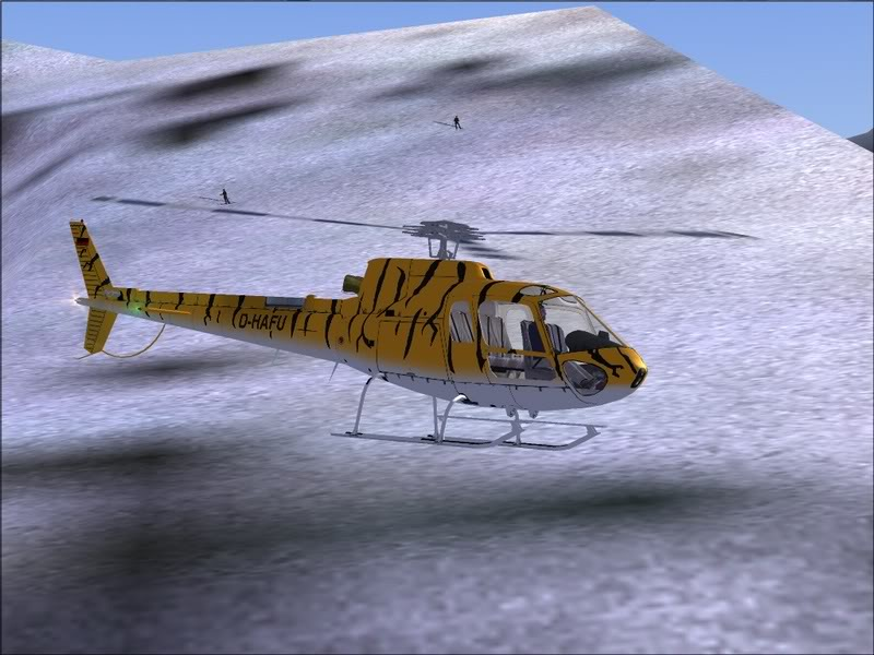 [Fs9]Esquiando com tigre de bengala 021