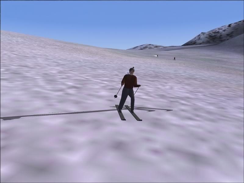 [Fs9]Esquiando com tigre de bengala 028