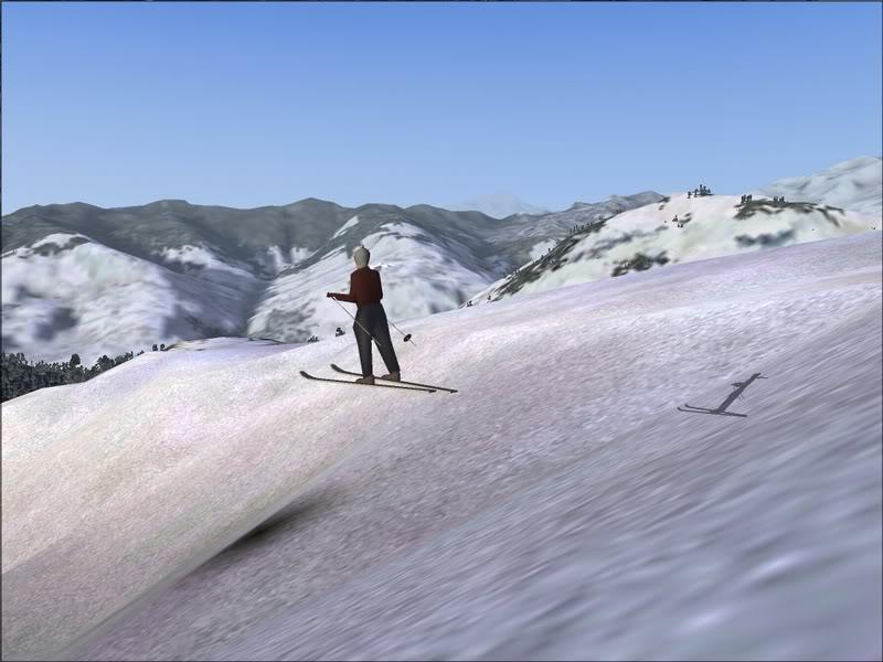 [Fs9]Esquiando com tigre de bengala 029