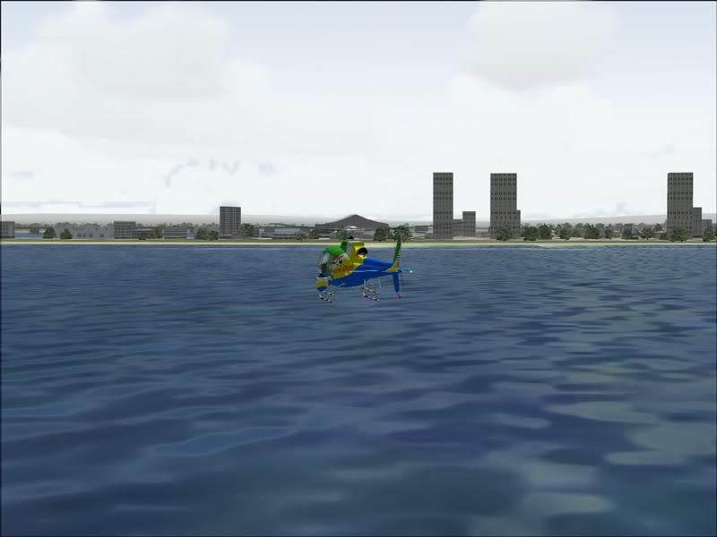 [FS9] Observação de baleias Baleia_013