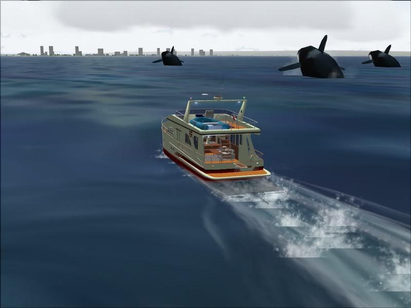 [FS9] Observação de baleias Baleia_036