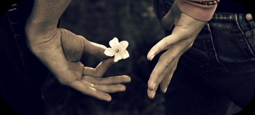Weakness In Me Romance_by_Faylinn