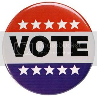 11/02/10 ~ make a difference Vote
