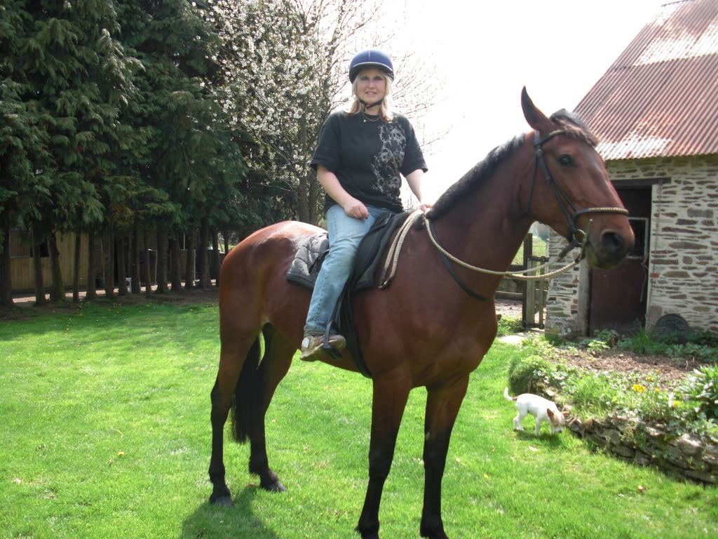 French trotter 2009 rescue Robbia Robbiaday8002
