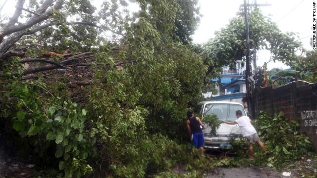 'Worse than hell' in typhoon-ravaged Philippines  131108014132-philippines-typhoon-tree-horizontal-gallery