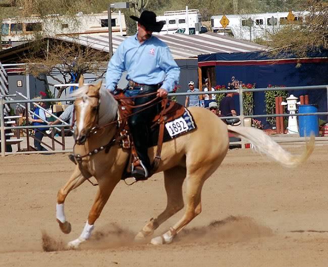 Quiets tame horses. HoorayforHollywoodFut3Feb1908