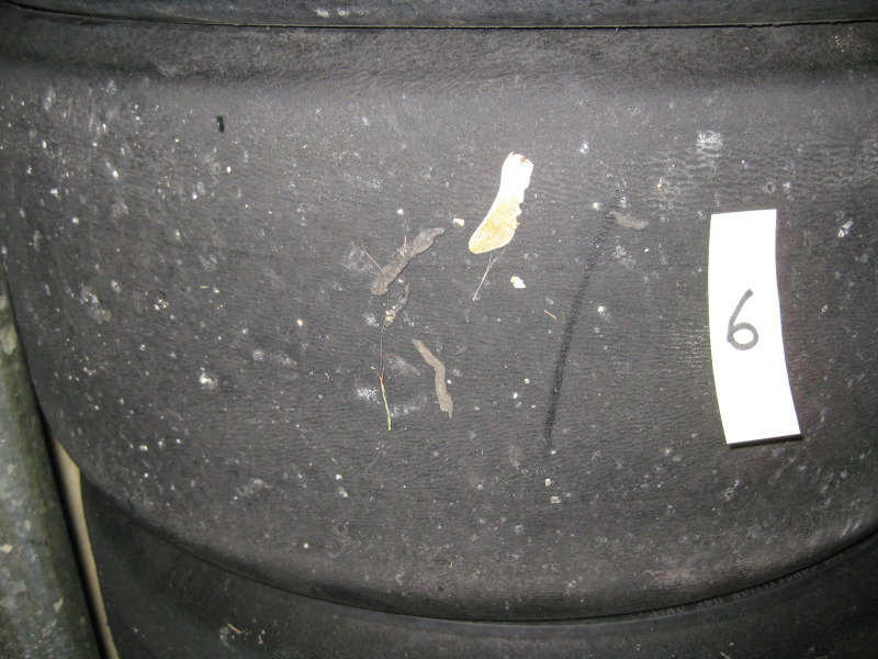 Chicago area 225 45 15 Hoosier R6 tires (used obviously) 2012Tires128
