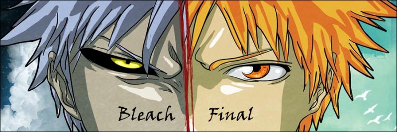 Bleach Final Rol