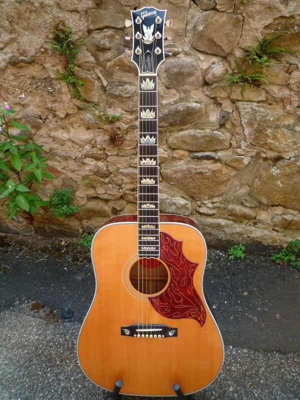 Gibson Firebird Acoustic AV P1010784_1_zpsbe4263d1