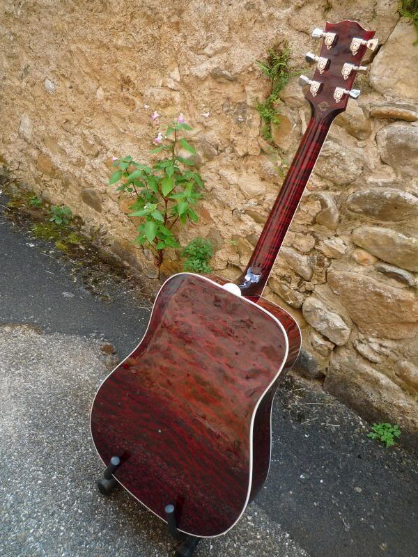Gibson Firebird Acoustic AV P1010787_1_zps506e5666