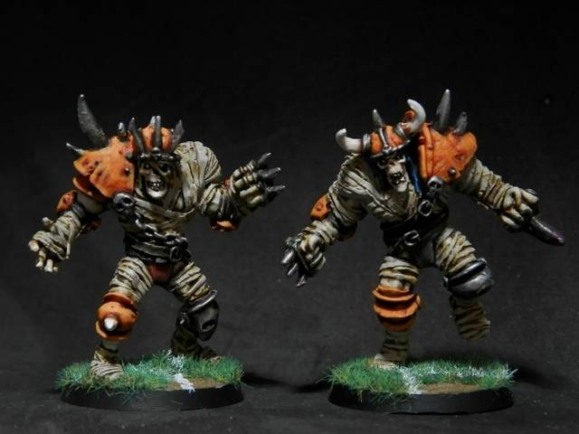 Undead Team for Blood Bowl P6250058%20700x525