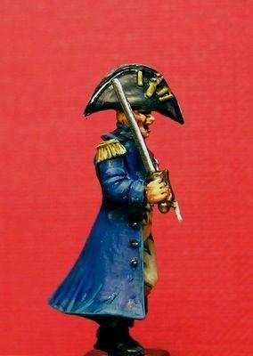 Wargammes Napoleonicos. P4040012