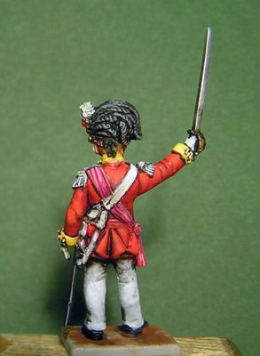 Wargammes Napoleonicos. P4160006