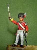 Wargammes Napoleonicos. P4160008-1