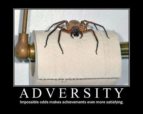 Motivational Posters - Page 2 Adversity