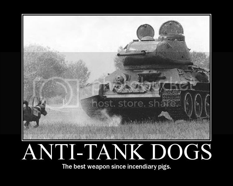 Motivational Posters - Page 2 Anti-tank_dogs