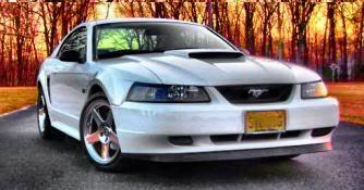2000 Mustang GT Owner from Vineland Crazyshi