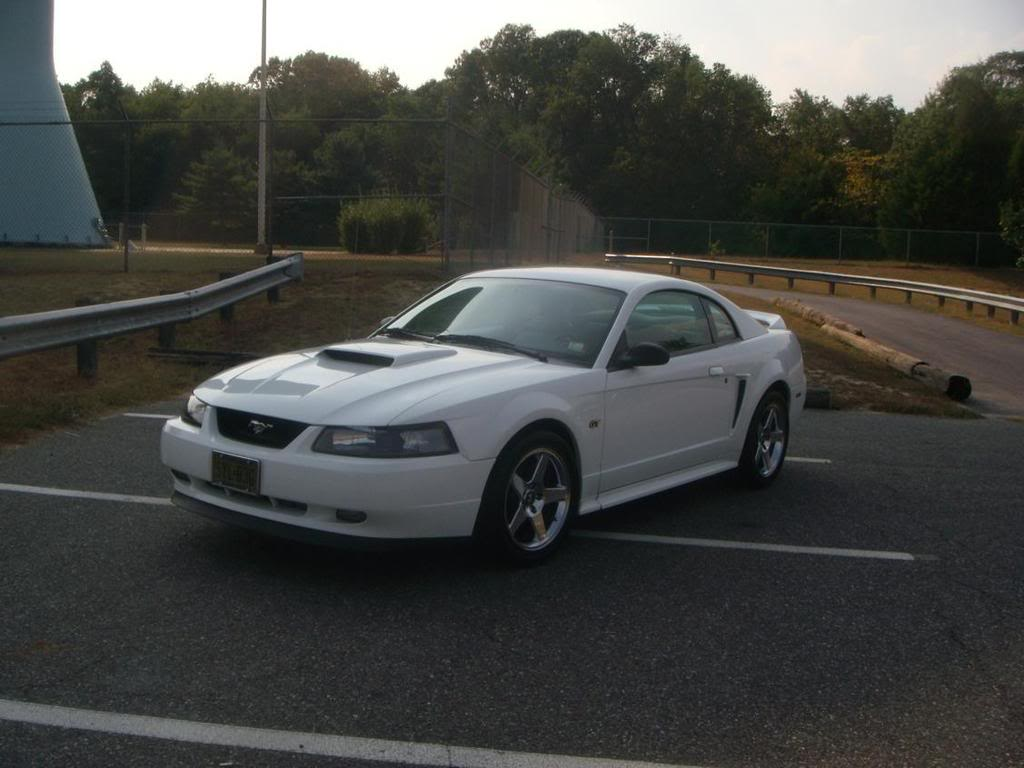 2000 Mustang GT Owner from Vineland Flags4