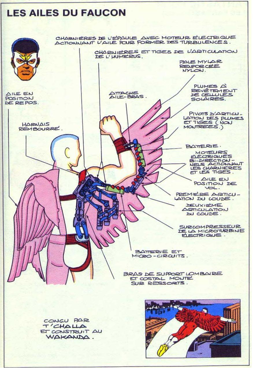 LE FAUCON ( Falcon ) Falcon1