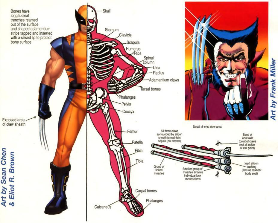 SERVAL ( Wolverine ) Wolverine9
