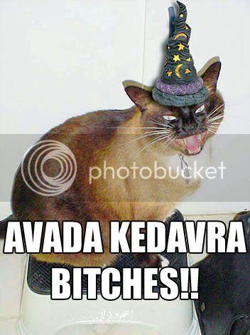 HAPPY BIRTHDAY ALLY! Avada