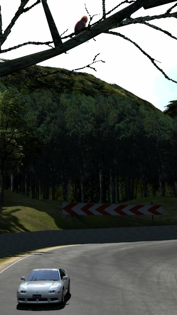 07 Chamonix - Rally TrialMountainCircuit_1_zpse7749306