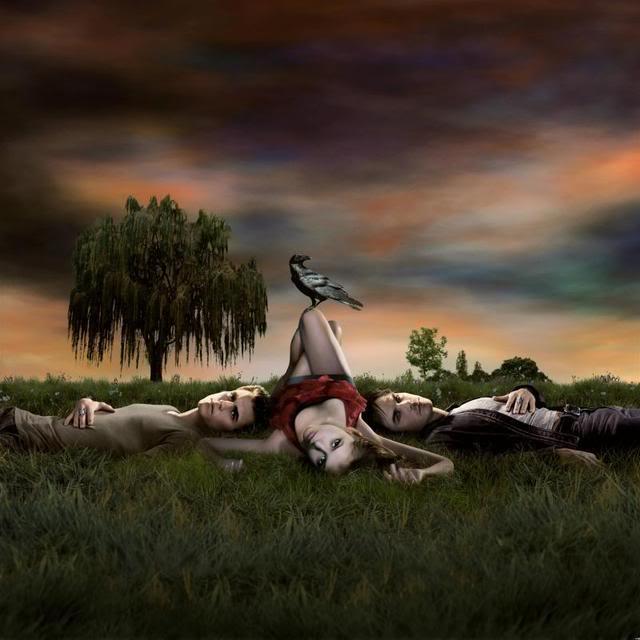 Vampire Diaries - Journal d'un vampire - Page 2 Vampdiaries