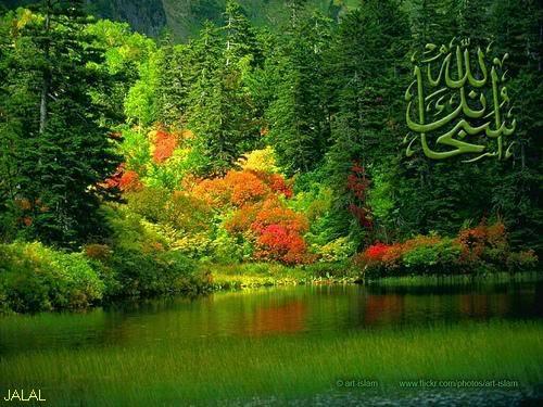 مكتبة صور منتديات واحة الإسلام - صفحة 3 JQl3_x9S4WFICC7TDknE8bCkW__F6EcFg-es3KHx1gg1_eLXVwUaABEobGz2FA1x