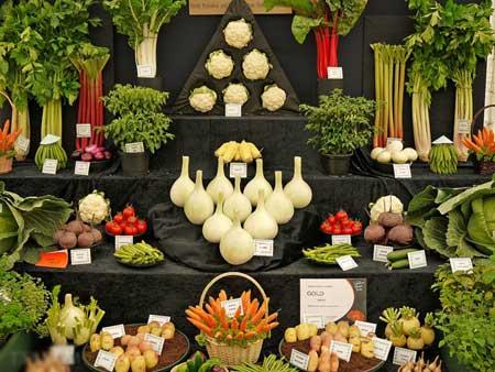 عرض الخضروات 6