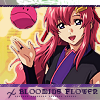 GUNDAM SEED DESTINY Lacus-bloom_evitalize