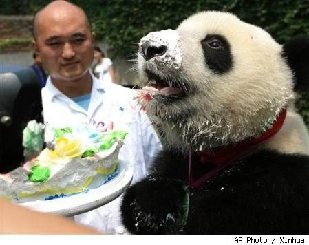 Birthday Greetings Panda_eating_cake