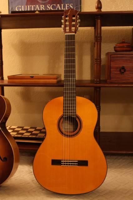 Guitars IMG_2029