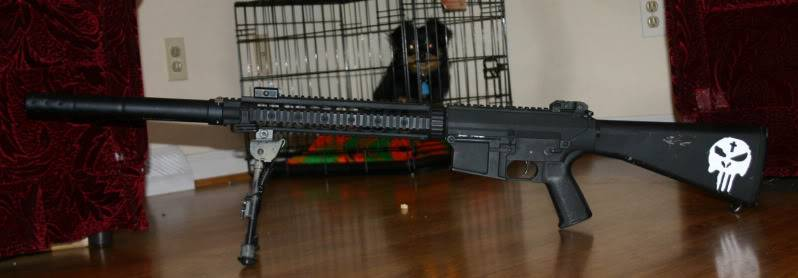 'Hak is bored, have a picture SR25c