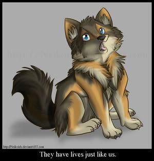 Sashi's bio ~ Red oak warrior Save_The_Wolves_by_Neikoish