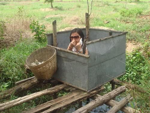 Ngôi nhà nhỏ trên đồng bằng sông Cửu Long CauTom