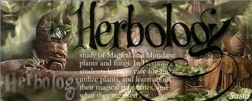 Loveheart's Corner Herbology1