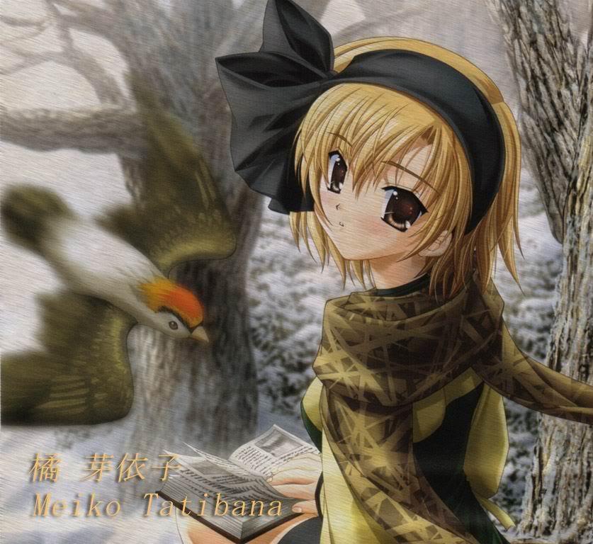 Meiko Bird