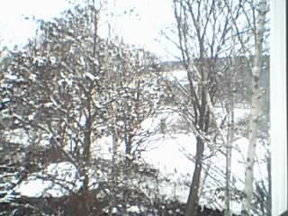 Snow Pictures! Image267