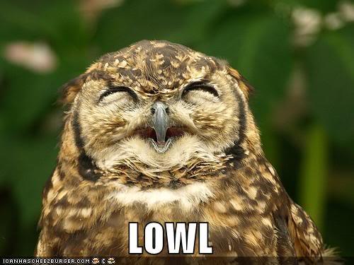 Fotos de cosas curiosas, raras, de risa, gore... extrañas vaya! - Página 5 Funny-pictures-this-owl-laughs-out-