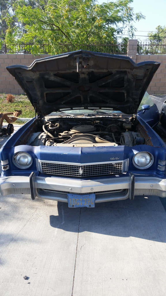 73 monte carlo parting out! 20170525_171749