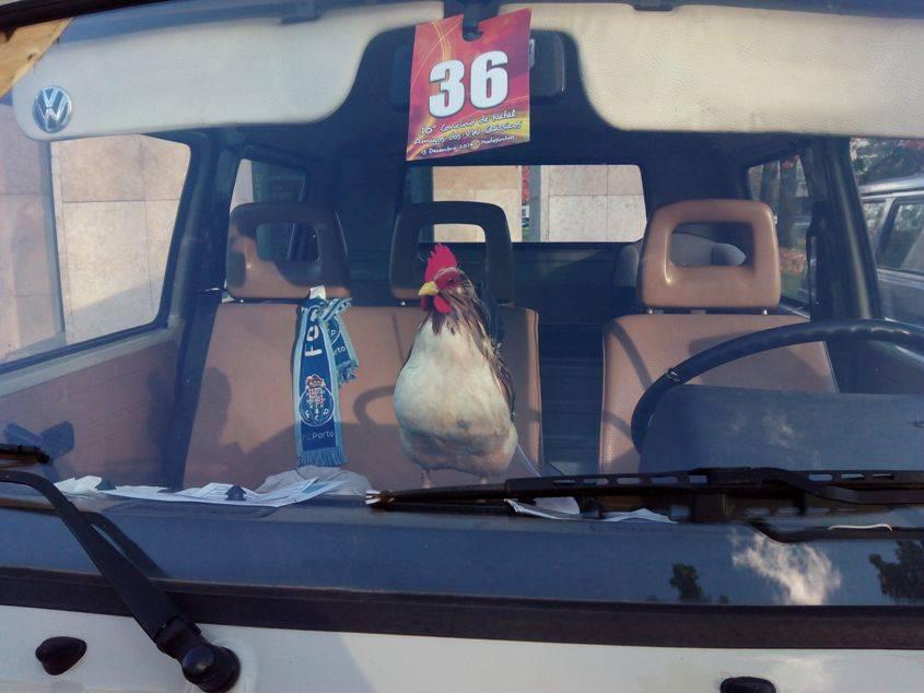 10' Convívio de Natal de Amigos dos VW Clássicos - 13 Dezembro 2014 - Matosinhos - Página 2 IMG_20141213_153101_zps78957d12
