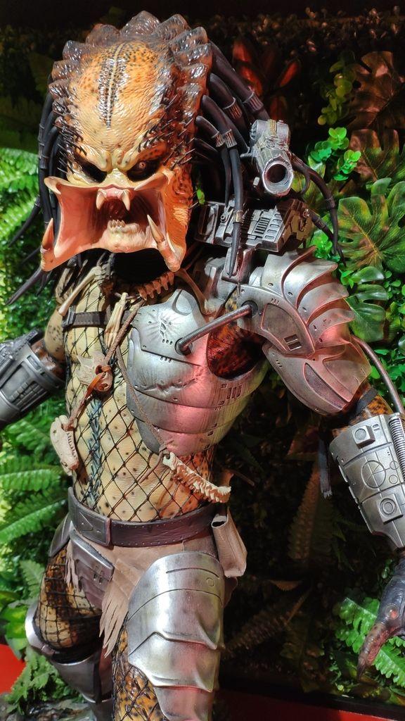 Vuelve Predator, vuelve Arnie! IMG_20190330_130454_zpsmvyagmwh