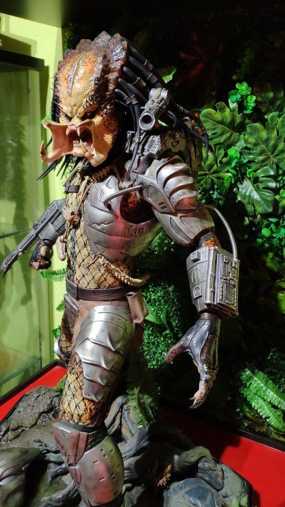 Vuelve Predator, vuelve Arnie! IMG_20190331_111557_zpslm6rglkb