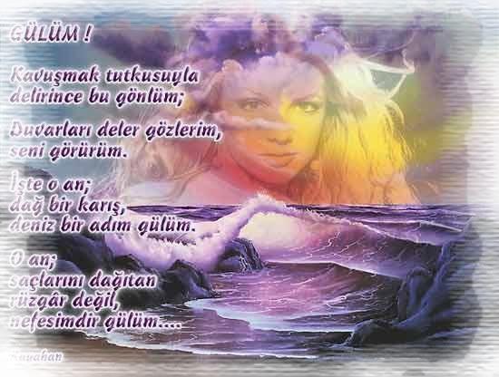 RESİMLİ ŞİİRLER Sevgi10066