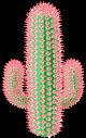 Flowering Cacti Cacti2fg