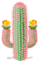 Flowering Cacti Scfro8576234