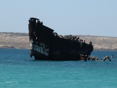 ..:Region Oriental:.. Sunken-ferry-cubagua