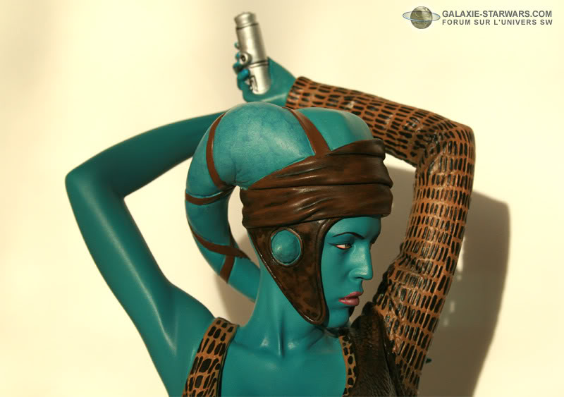 Aayla Secura and Shaak Ti mini-bust - Page 8 10-19