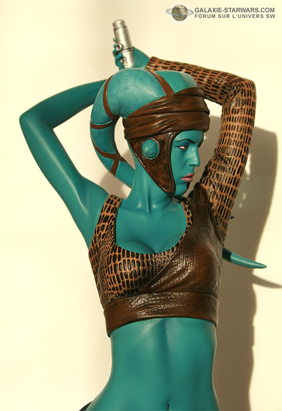 Aayla Secura and Shaak Ti mini-bust - Page 8 2-37